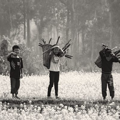 Querétaro busca erradicar trabajo infantil